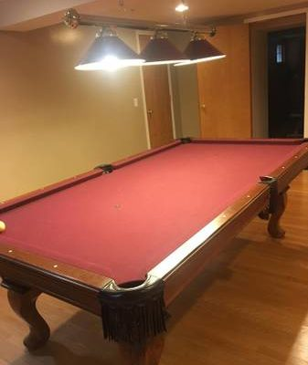 Olhausen Pool Table with Pool Lights and Sticks